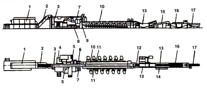 Конвейер сортировочный для рыбы отличие каравеллы от транспортера и мультивена